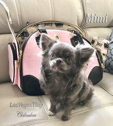 Mimi retired
