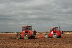 Seeing Double...... 2  MF1200 tractors & 2 MF24 cultivators