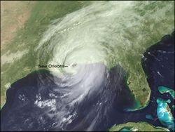 Harricane Katrina - USA's Disaster