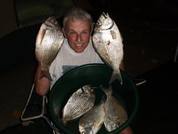 Lots of Bream!