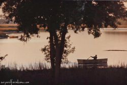 Fisherman on Wallace Creek