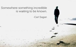 A quote from Carl Sagan