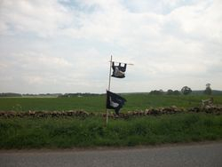 TWO Battle flags flying