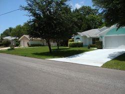 Whole Yard Installation of Bahia Grass