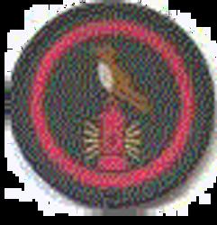 Nightingale Patrol Badge