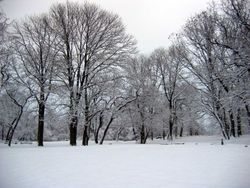 Fort Totten Park Winter 3