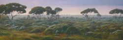 Roe Plains
