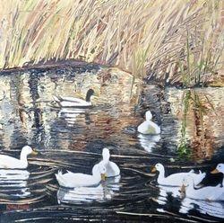 Brooks Pond Ducks