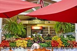 Providence Produce Market