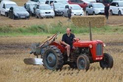 MF 35 & plough