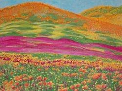 California Golden Poppies Field 2