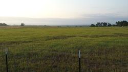Big Pasture