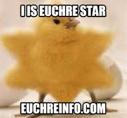 I is Euchre star!
