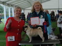 Best of Breed at darlington Ch. Show