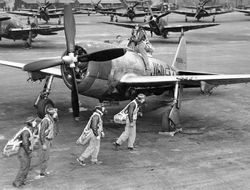 P-47 Monster of the Pacific: