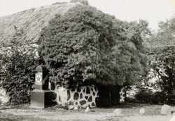 Hotell Arild (Rusthallargarden) 1927