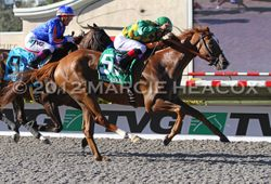 Dullahan wins the Pacific Classic