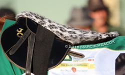 Leopard Print Saddle