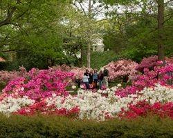 Glencairn Garden, Rock Hill, SC