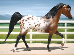 Traditional Black Stallion