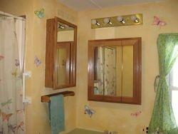 Butterflies matching the Shower Curtain