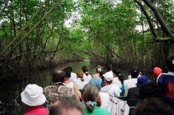 Caroni River Boat Tour 2