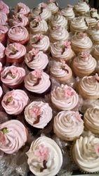 Lt Pink Apple Blossom Cupcakes