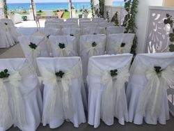 Chair decor with natural greens.