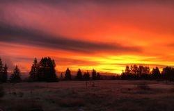 Oakville Area Sunrise