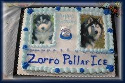 Zorro's Cake