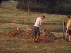 Mikael raking leaves