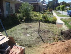 Before - Front yard