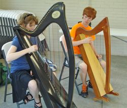 Wednesday harp class