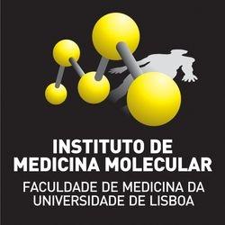 IMM logo negative-1