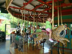 Allison on the carousel