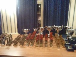 The 2011 Trophies