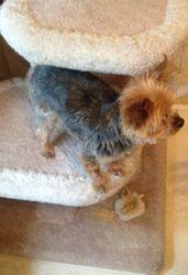 Here's Peanut!!!!