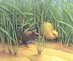 Kuiken en Muis op stap