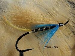 Hairy Mary