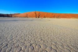 Morning in Dead Vlei