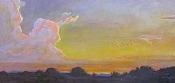 Evening Ibis