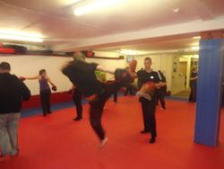 Jumping Round Kick