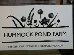 Hummock Pond Farm