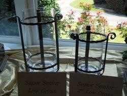 Super Senior Prizes