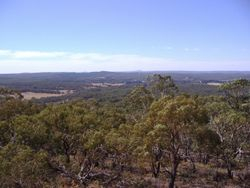 Flagstaff Hill Lookout