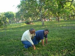 Omar and Pastor Pray and Dedicate Shelter Land