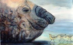 Big Head (Elephant Seal) & Little Heads