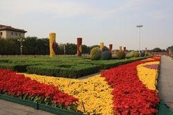 Gardens in Tiananmen Square in Beijing