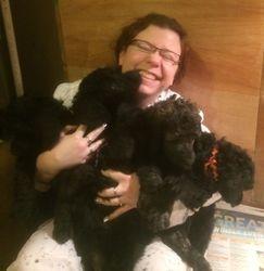 Getting some puppy love!  46 days.
