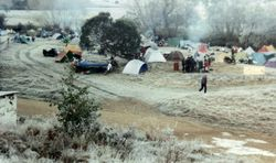 1994 Morning in the -9oC frost. What's new!